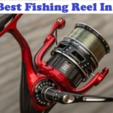 best fishing reel in 2020